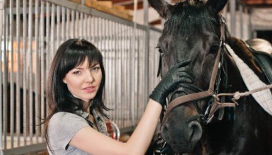Pferdebedarf online kaufen